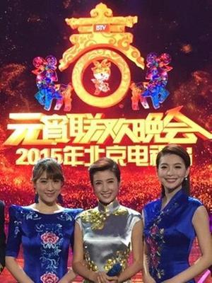 北京卫视2015元宵晚会