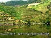 勇闯天涯2-Wine Trails France Italy & Lberia(葡萄酒之旅:法国,意大利和伊比利亚)