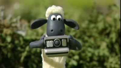 小羊肖恩19