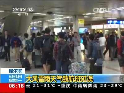 [视频]哈尔滨:大风雷雨天气致航班延误