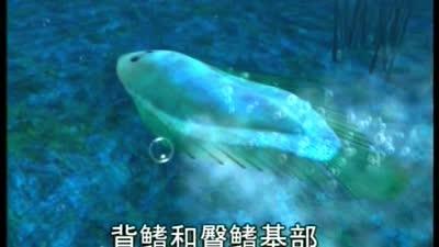 蓝猫淘气3000问-海洋世界43