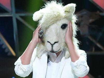 羊驼荣耀揭面女儿选面具