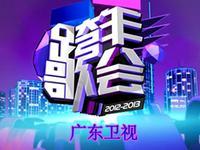 2013无限极活力中国广东卫视跨年歌会