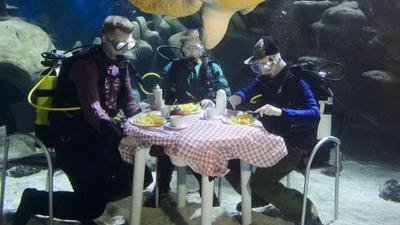 潜水员水下用餐遭围观 走入神秘的游艇世界