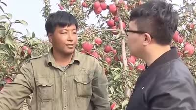 """赵大哥的""""苹果经""""  瓶装枸杞好处多"""