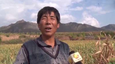 节水灌溉不再靠天吃饭 有了冷库葡萄不愁销售