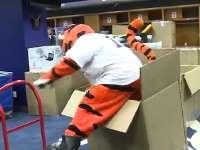 《棒球周刊》之大话棒球 看吉祥物如何装箱打包自己