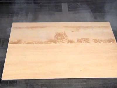 动态激光打标机在木制品上激光雕花老虎图案