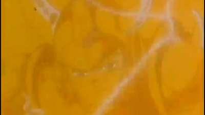 魔神坛斗士17