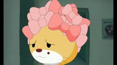 吉祥猫可可04