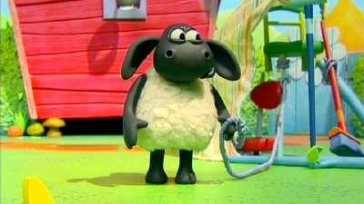 小小羊提米23