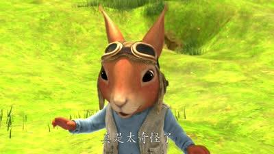 比得兔12