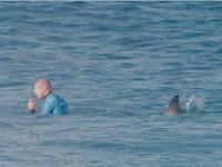 冲浪冠军遭鲨鱼袭击 摄像镜头记录极限逃生