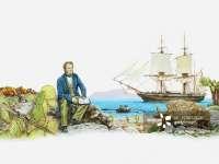 麻省理工达尔文与进化