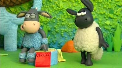 小小羊提米02