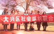 北京市大兴区社会组织联合会