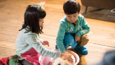 夏天变身大姐姐耐心鼓励 瑞瑞细心照顾小兔子