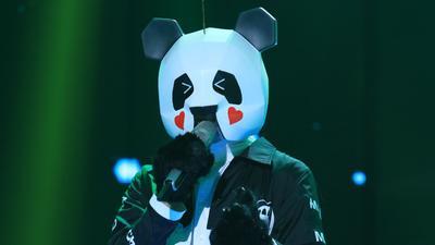 熊猫PK大张伟怒讲段子