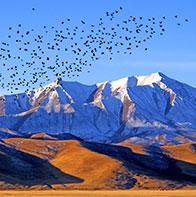 探秘青藏高原的人与自然