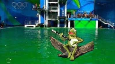里约泳池变绿竟因王宝强?为何却绿了罗切特的白发