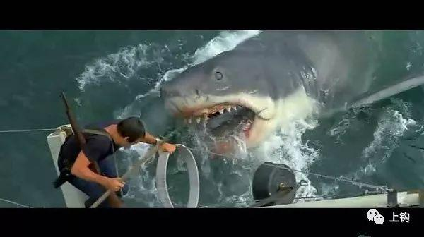海钓・故事�蝣栌阕卜�海钓船,少女险些丧命,上演现实版《大白鲨