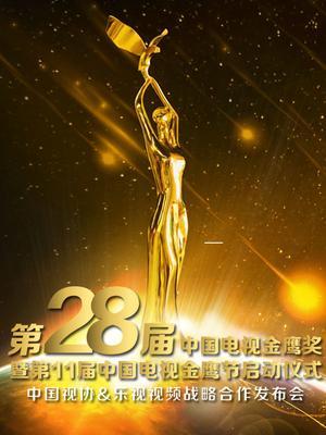 第28届中国电视金鹰奖