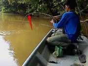 坐在船上钓虾,好大一只!