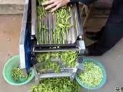 民间发明的青毛豆剥壳机器