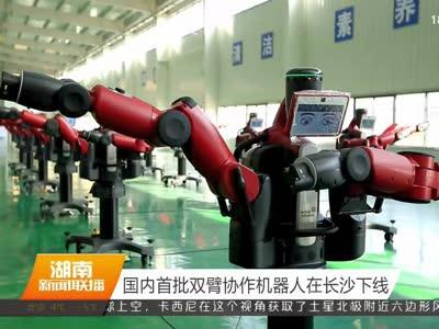 国内首批双管协作机器人在长沙下线