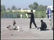实拍伊朗特种兵表演踢陶罐次次踢不碎 尴尬全场