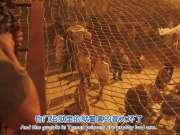 越狱第五季新卡司Augustus Prew带你介绍米帅的新家 也门监狱