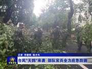 """台风""""天鸽""""来袭 部队官兵全力应急防御"""