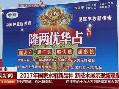 2017年国家水稻新品种 新技术展示现场观摩会
