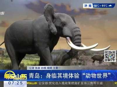 """[视频]青岛:身临其境体验""""动物世界"""""""