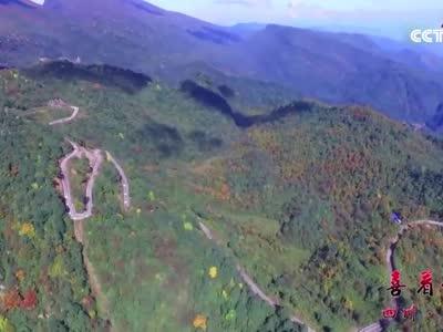 [视频]瓦屋山上的3D彩林告诉你秋的眷恋