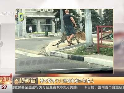 [视频]俄罗斯男子上街遛老虎吓坏路人