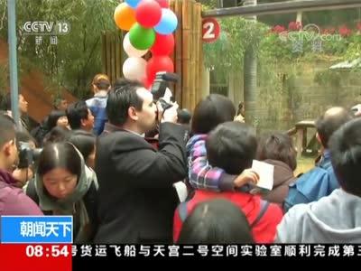 """[视频]福建福州 中外粉丝送别""""传奇熊猫""""巴斯"""
