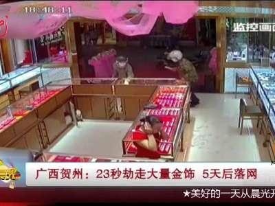 [视频]23秒劫走大量金饰 5天后落网