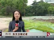 """上海:正在""""打开""""的文体空间"""
