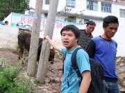 实拍:小伙去集市买牛,差点被牛给踢了