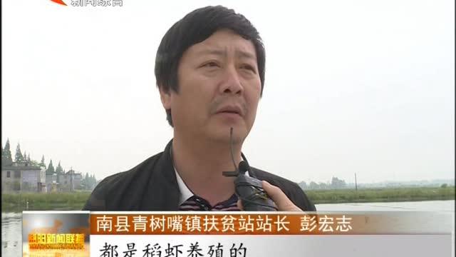 """南县:""""稻虾""""产业助推贫困户脱贫"""