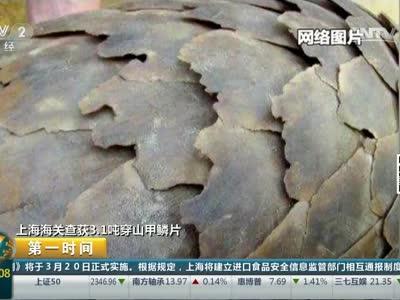 [视频]上海海关查获3.1吨穿山甲鳞片