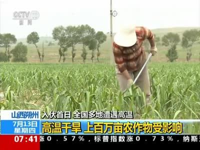 [视频]入伏首日 全国多地遭遇高温