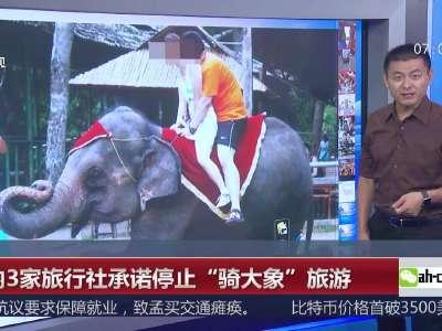 """[视频]国内3家旅行社承诺停止""""骑大象""""旅游"""