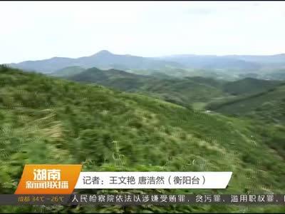 2017年08月12日湖南新闻联播