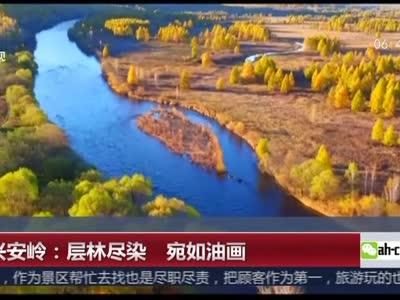 [视频]大兴安岭:层林尽染 宛如油画