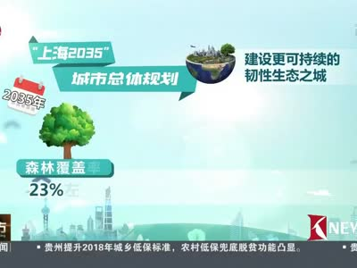 """[视频]""""上海2035""""城市规划发布 引领建成""""卓越全球城市"""""""