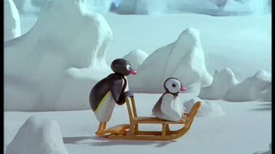 企鹅家族 第5季 12
