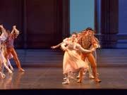天鹅湖(芭蕾舞蹈家:纽瑞耶夫 指挥:Vello Pähn 乐团:巴黎歌剧院管弦乐团)
