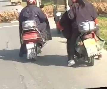 [视频]上万只鸭子排队过马路 队形整齐排列有序